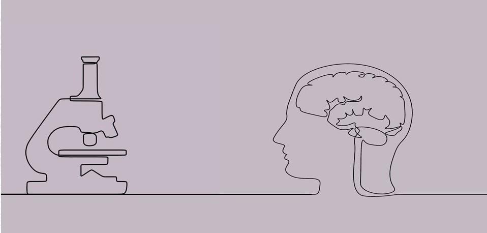 Mózg i jego tajemnice, czyli jak neuronauka wspiera nasz rozwój